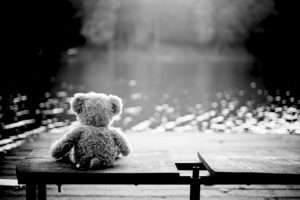 teddy bear by water