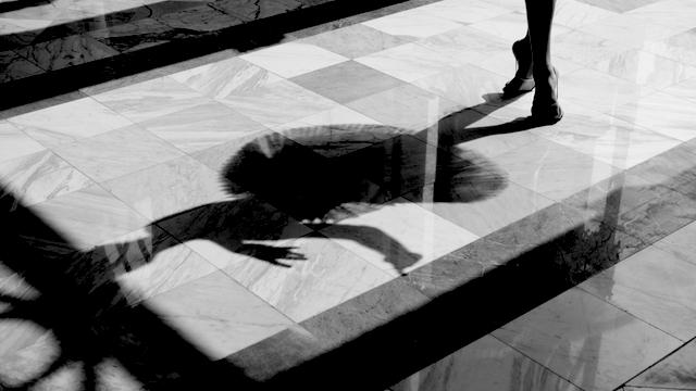 Shadow of a ballerina